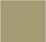 e-kobi, logo marki Spiffy